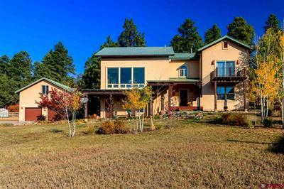 1120 HILLS CIR, Pagosa Springs, CO 81147 - Photo 1
