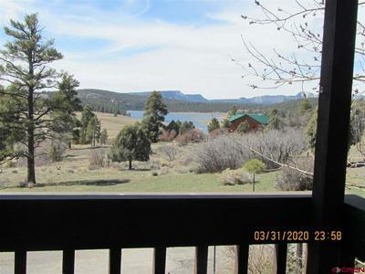 410 TERRY ROBINSON RD, Pagosa Springs, CO 81147 - Photo 2