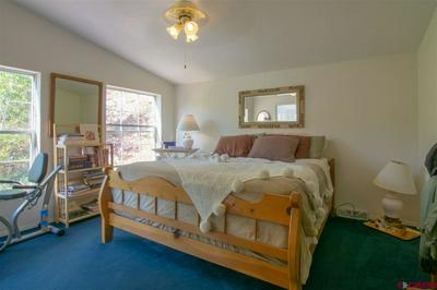 5435 COUNTY ROAD 203, DURANGO, CO 81301 - Photo 2