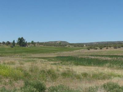 1243 COUNTY ROAD 332, Ignacio, CO 81137 - Photo 1