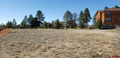 109 ACE CT, Pagosa Springs, CO 81147 - Photo 2