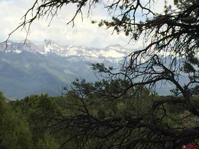 132 TURKEY TRL, Ridgway, CO 81432 - Photo 2