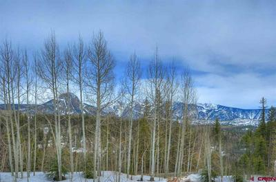 50827 HIGHWAY 550, Durango, CO 81301 - Photo 1