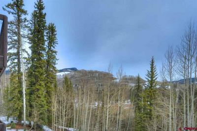 50827 HIGHWAY 550, Durango, CO 81301 - Photo 2