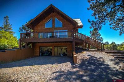 201 CRESTONE PL, Pagosa Springs, CO 81147 - Photo 1