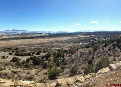LOT 3 6300 ROAD, Montrose, CO 81403 - Photo 1