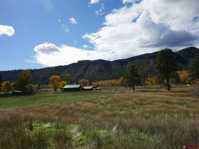 301 COUNTY ROAD 175 #PIEDRA RIVERSIDE, Pagosa Springs, CO 81147 - Photo 2