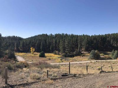 1005 COUNTY ROAD 146, Pagosa Springs, CO 81147 - Photo 2