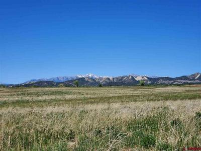 354 COUNTY ROAD 229, Durango, CO 81301 - Photo 2