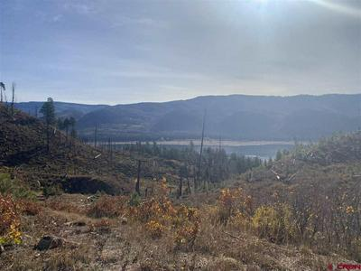 TBD LAKE VIEW DRIVE, Vallecito Lake/Bayfield, CO 81122 - Photo 2