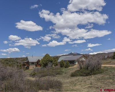 1405 COUGAR WAY, Hesperus, CO 81326 - Photo 1