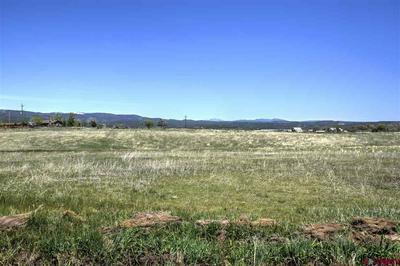 354 COUNTY ROAD 229, Durango, CO 81301 - Photo 1