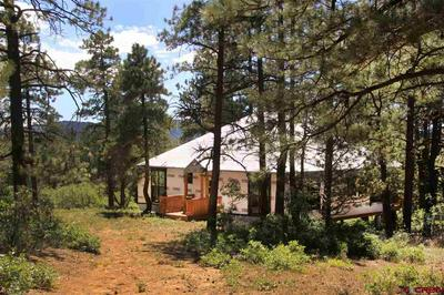 214 JUSTINS RD, Pagosa Springs, CO 81147 - Photo 1