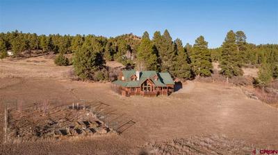 433 LONG HOLLOW CIR, Durango, CO 81301 - Photo 2