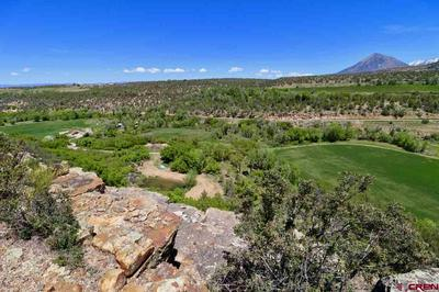 TBD CONSERVANCY ROAD, Crawford, CO 81415 - Photo 2