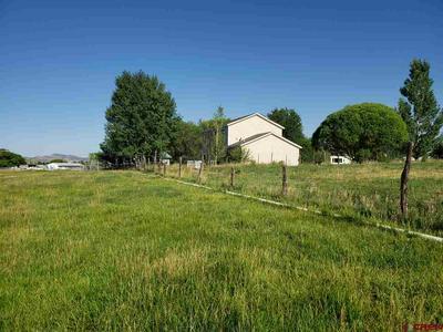 172 E 10TH AVE, Nucla, CO 81424 - Photo 2