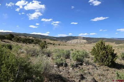 PARCEL 1 OAK CREEK ROAD, Eckert, CO 81418 - Photo 1
