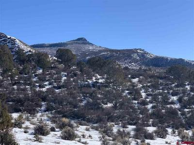 LOT 87 CATHEDRAL PEAK RANCH, Crawford, CO 81415 - Photo 2
