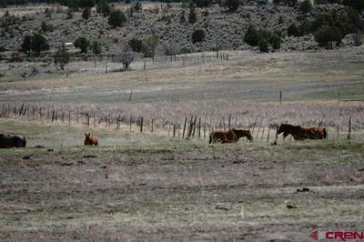 1342 COUNTY ROAD 332, Ignacio, CO 81137 - Photo 2