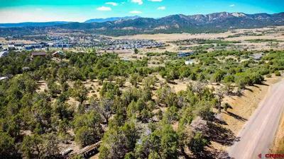 TBD MARIPOSA DR., Durango, CO 81301 - Photo 1