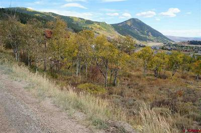 4217 BRYANT AVE, CRESTED BUTTE, CO 81224 - Photo 2