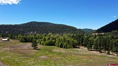 TBD CR 501, Bayfield, CO 81122 - Photo 2