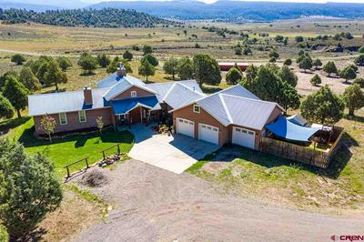 567 TALL PINE PL, Pagosa Springs, CO 81147 - Photo 1