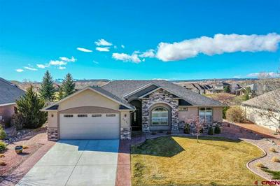 3931 MOUNT HAYDEN DR, MONTROSE, CO 81403 - Photo 2