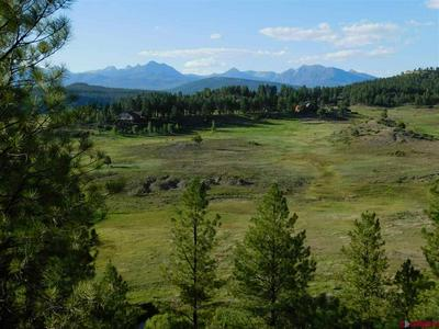 X COUNTY ROAD 302, Pagosa Springs, CO 81147 - Photo 1