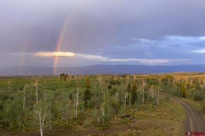 100 GOLDEN GROVE LN, Montrose, CO 81403 - Photo 2