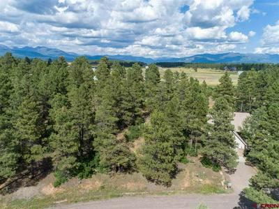 311 W GOLF PL, Pagosa Springs, CO 81147 - Photo 2