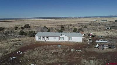 289 CHURCH HOLLOW DR, HESPERUS, CO 81326 - Photo 2
