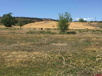 TBD (LOT 9) SOLAR HEIGHTS LANE, Montrose, CO 81403 - Photo 2