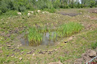19976 3100 RD, Hotchkiss, CO 81419 - Photo 2
