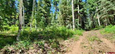 TBD DEER RUN WAY, Durango, CO 81301 - Photo 2