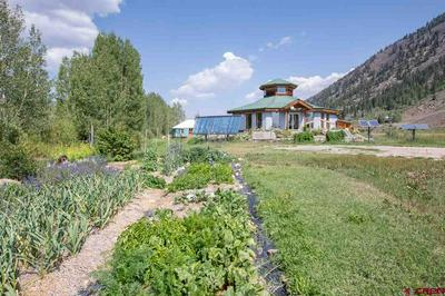 17280 HIGHWAY 135, Almont, CO 81210 - Photo 1
