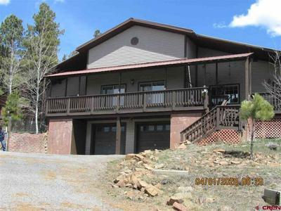 410 TERRY ROBINSON RD, Pagosa Springs, CO 81147 - Photo 1