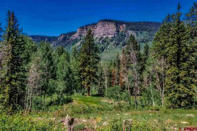 TBD TWO DOGS TRAIL, Durango, CO 81301 - Photo 1