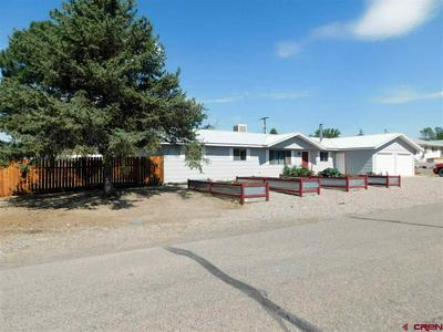 13165 ORCHARD AVE, Eckert, CO 81418 - Photo 1