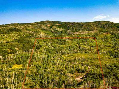 TBD ASPEN HILLS ROAD, Cedaredge, CO 81413 - Photo 2