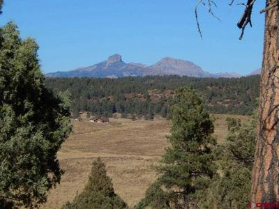 X COUNTY RD 359 PLACE, Pagosa Springs, CO 81147 - Photo 1