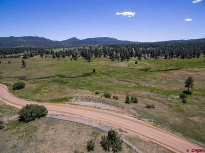701 COUNTY ROAD 125, Hesperus, CO 81326 - Photo 1