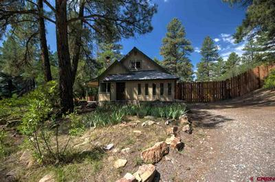 306 CACTUS DR, Pagosa Springs, CO 81147 - Photo 1