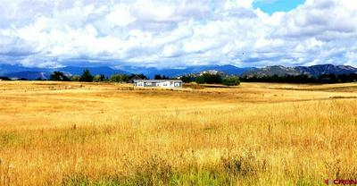 831 COUNTY ROAD 304, Durango, CO 81303 - Photo 1
