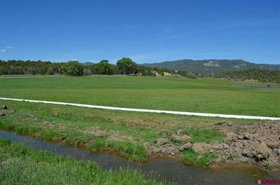 2807 HWY 151, IGNACIO, CO 81137 - Photo 1
