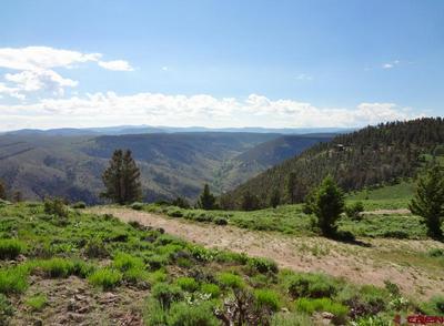 TBD MOSQUITO TRAIL, Powderhorn, CO 81243 - Photo 1