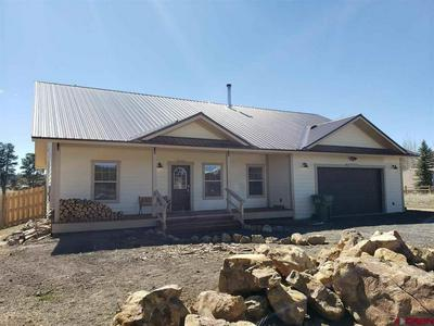 434 VISTA BLVD, Pagosa Springs, CO 81147 - Photo 1