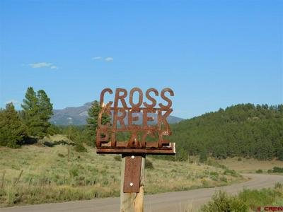 X COUNTY ROAD 302, Pagosa Springs, CO 81147 - Photo 2