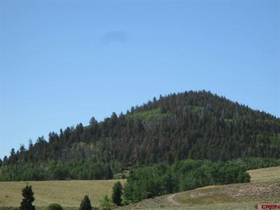 TBD GOTHIC TRAIL, Powderhorn, CO 81243 - Photo 1