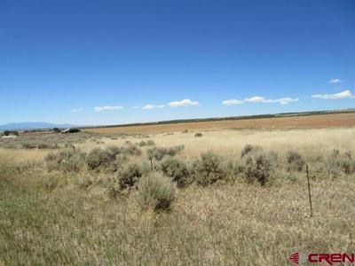 TBD ROAD M.4, Cahone, CO 81324 - Photo 1
